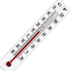 Minithermometer 8 cm 1 stuk