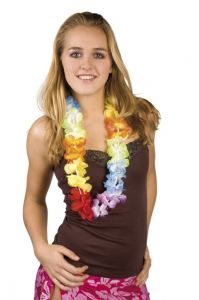 Bloemensliert Hawaï