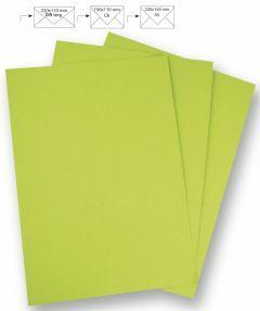 Papier A4 220 g 5 stuks lindegroen