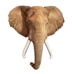 Puzzel 700 stuks I Am Elephant 96,5 x 106,7 cm 10+