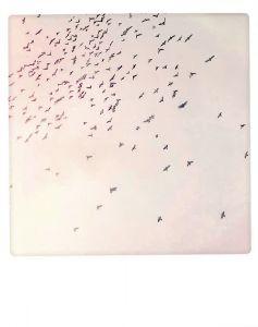 Postkaart - Birdstorm