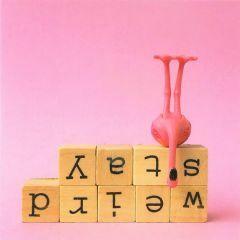 Wenskaart - Flamingo Stay Weird