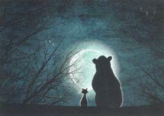 Postkaart - Beer en kat in maanlicht