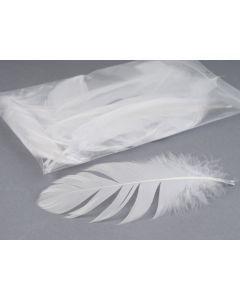 Pluim nageoires groot 15 cm ca. 25 stuks wit