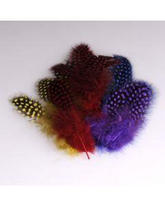 Krea Feathers pluim parelhoen 20 stuks assortiment