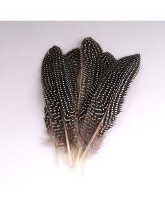 Krea Feathers pluim parelhoen 15-20 cm 8 stuks naturel