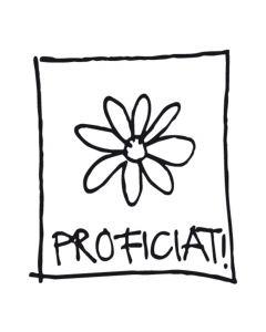 Stempel proficiat bloem