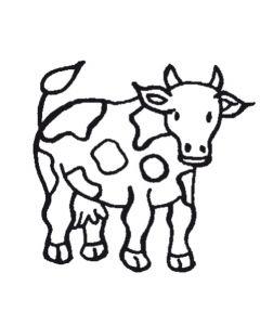 Stempel 4 x 4 cm koe