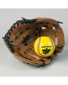 Honkbalhandschoen en bal