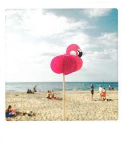 Postkaart - Beachfun