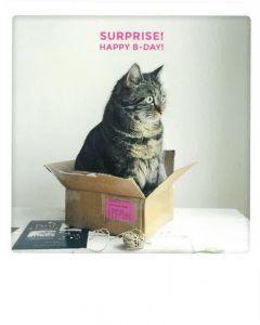 Postkaart - Surprise