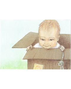 Postkaart Tingeling - doos